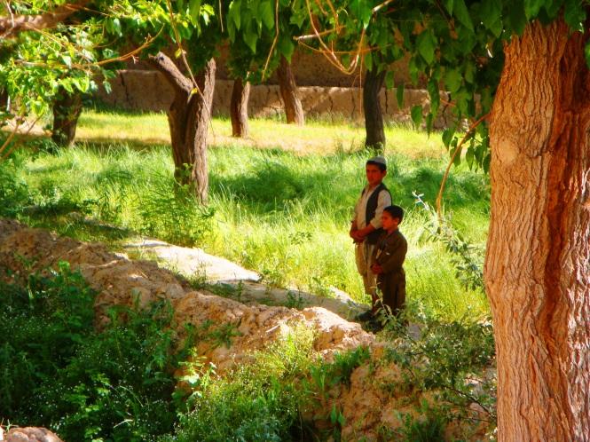 Afghan 028